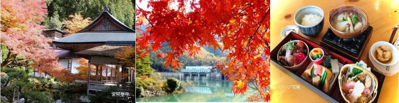 とっておきの京都!秋の京北・紅葉の名所めぐりと光秀ゆかりの寺